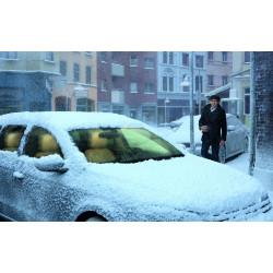 Automobilių šildymo sistemos